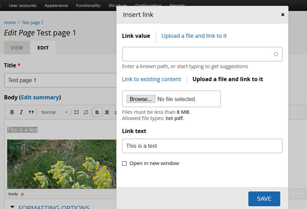CKEditor – incorrect initial display of Insert link dialog