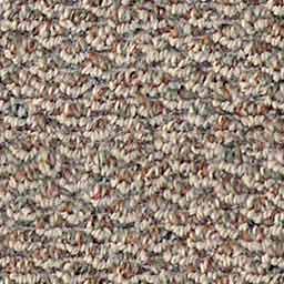 carpet_berber_multi