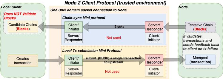 N2C_protocol