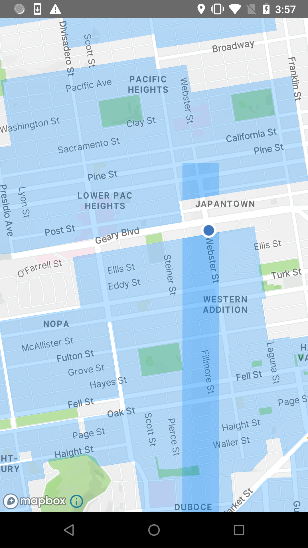 Overlapping polygons at tile buffer when location dot