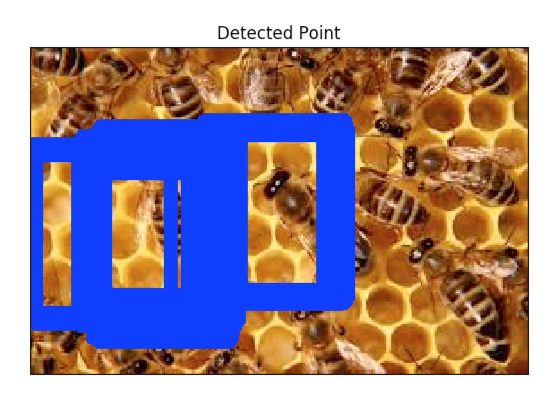 Bee template compared to group of bees