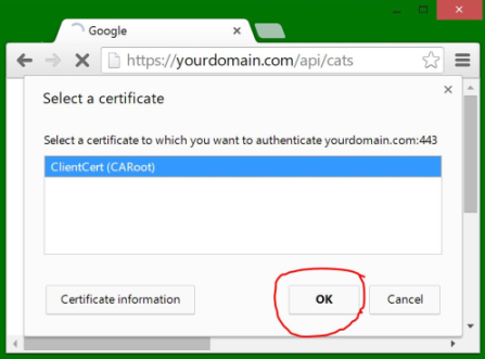 Support for HTTPS certificate-based authentication needed · Issue ...
