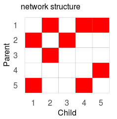 Network structure