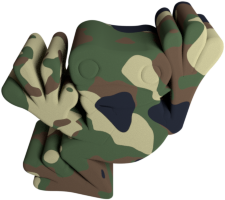 5-camouflage