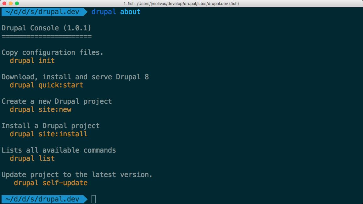 Drupal Console terminal output