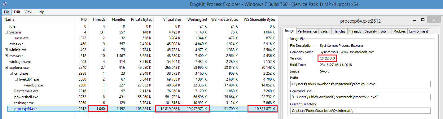 Process Explorer: could make system unresponsive · Issue