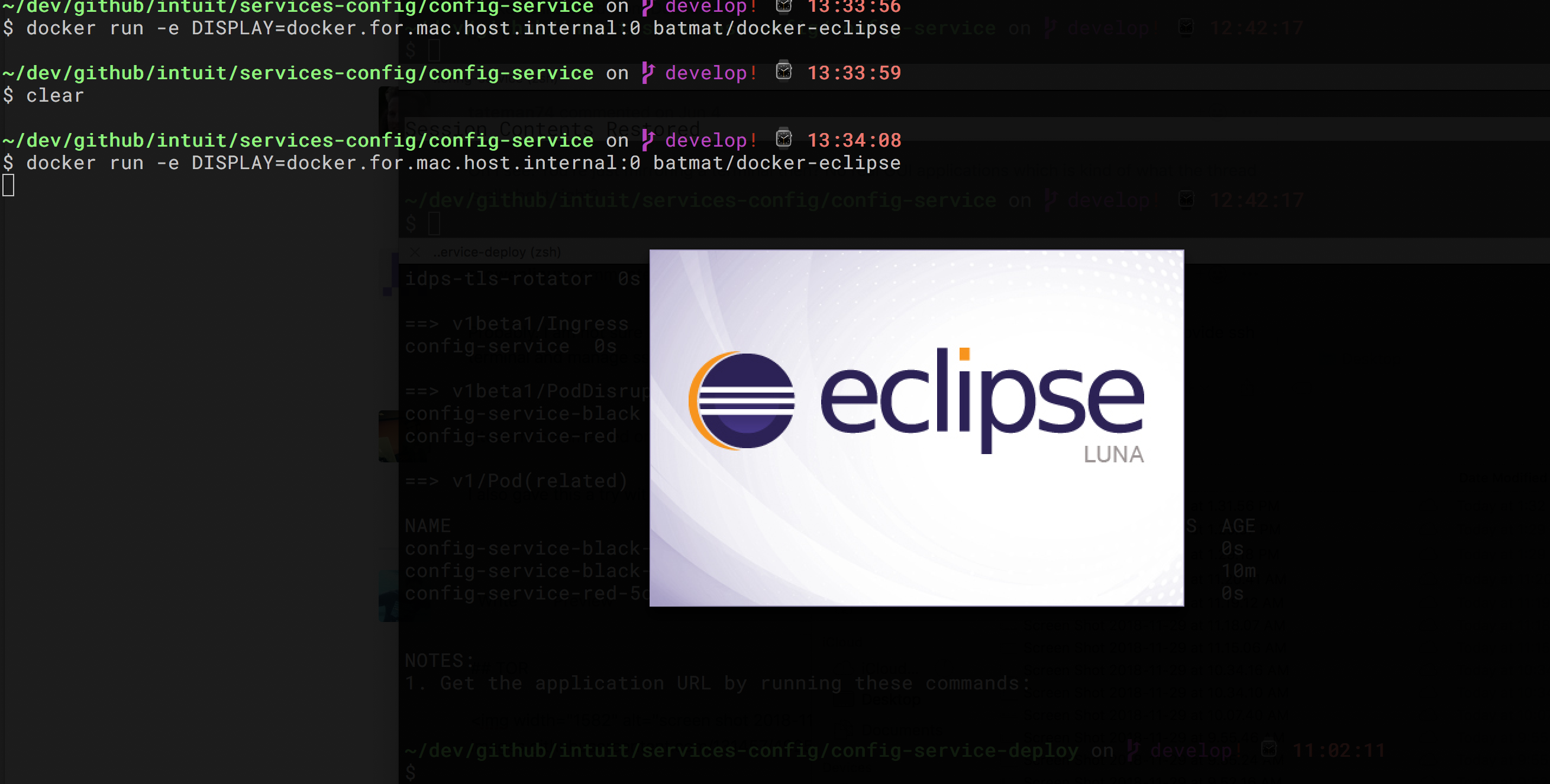Developers - how to use -e DISPLAY flag on osx? -