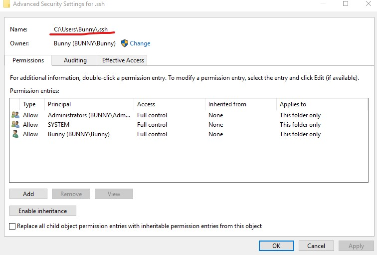 Bad Owner or Permissions on %USERPROFILE%\ ssh\config file