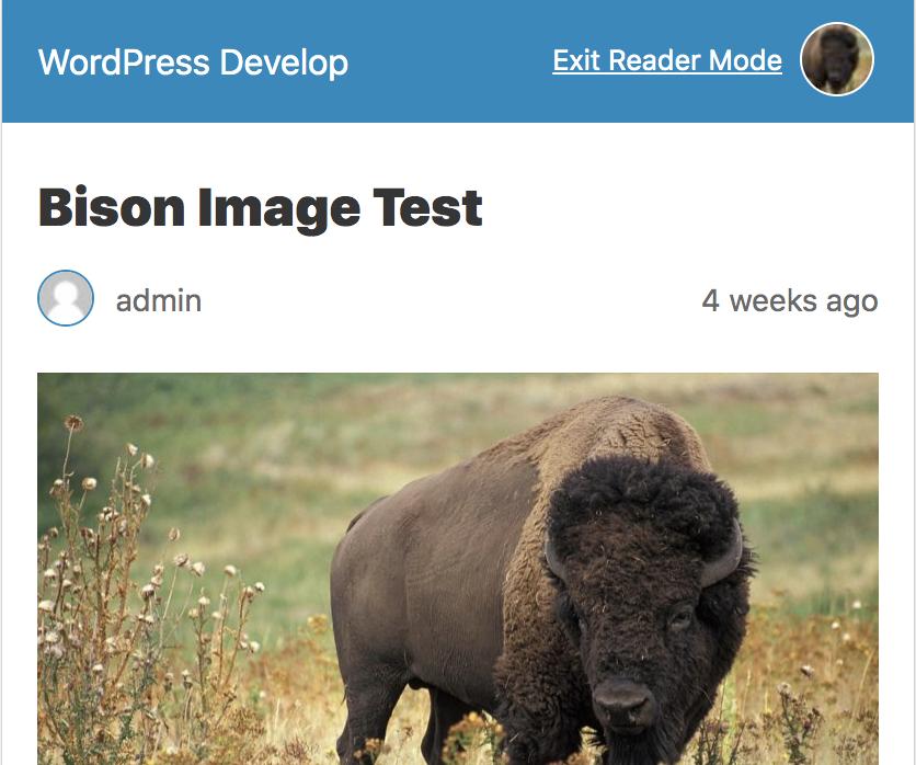 When site icon is present