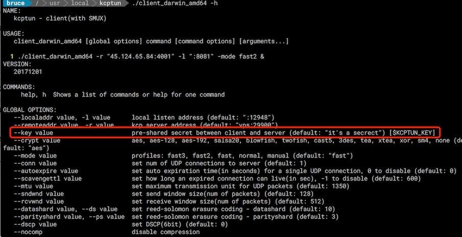 Developers - kcptun和ss设置疑惑-
