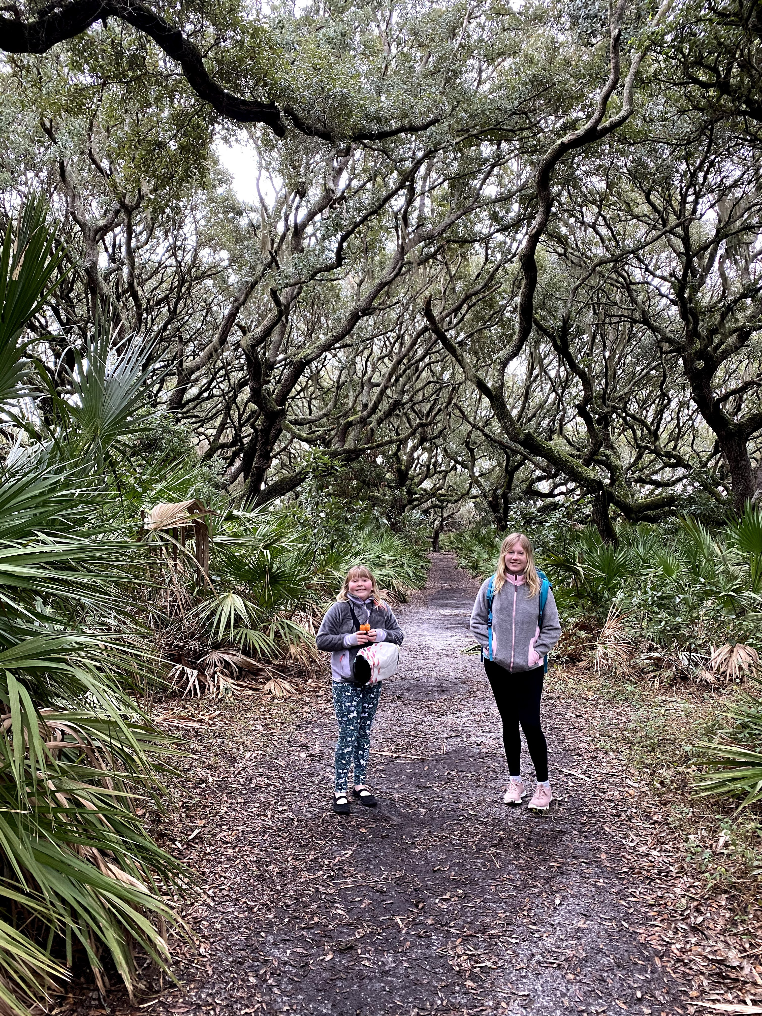 Hiking Cumberland Island