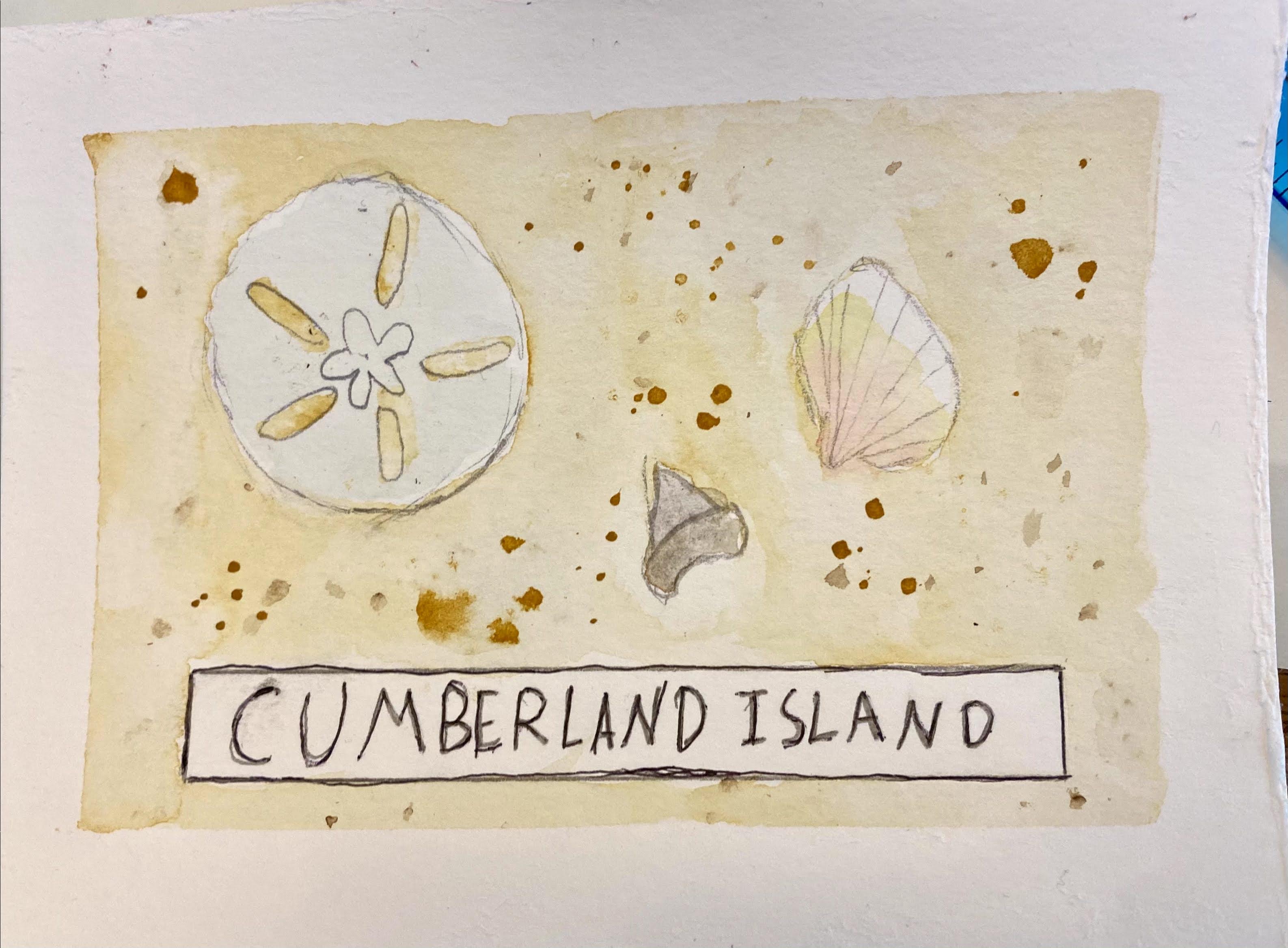Aud's Cumberland Island PC