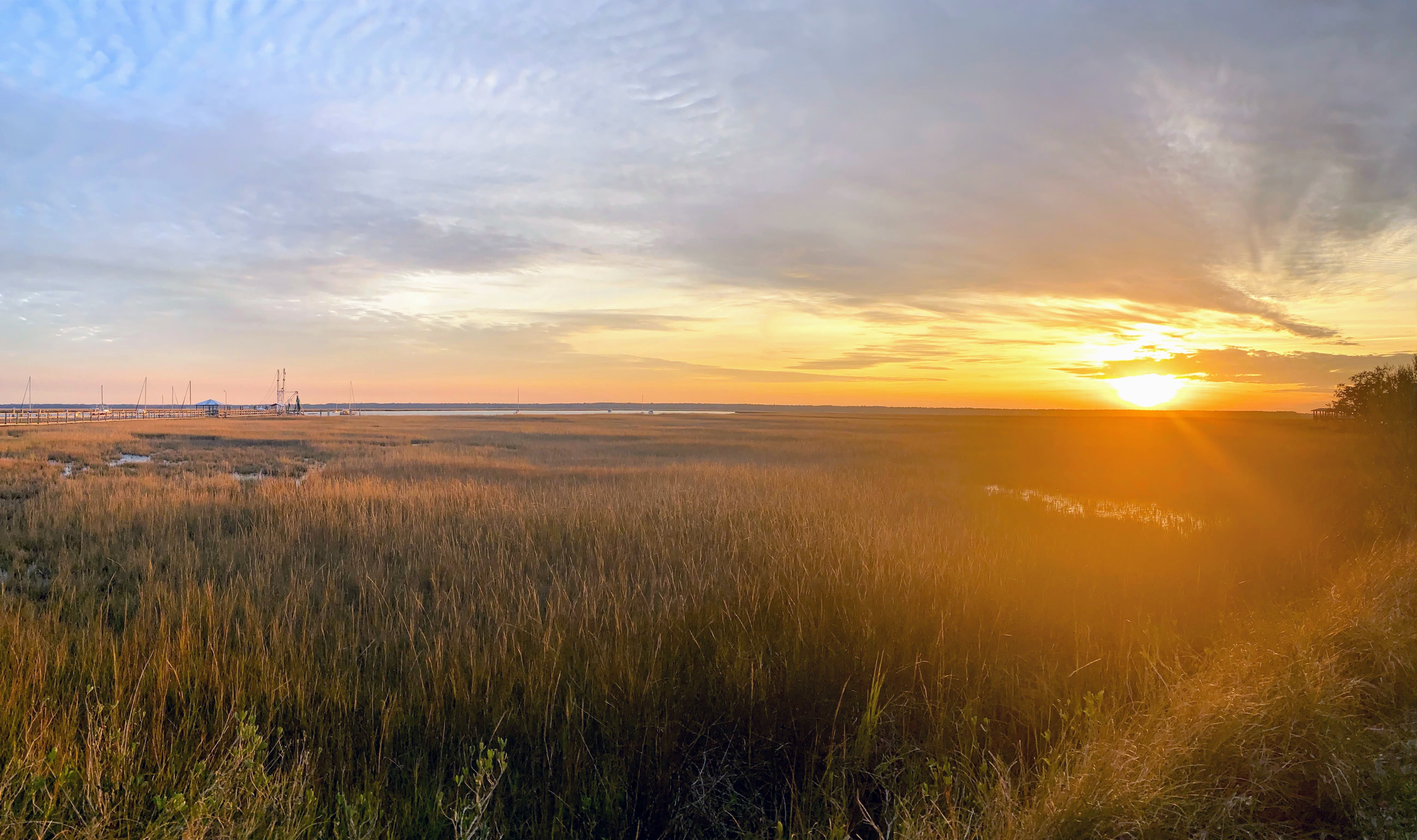 sunrise over salt marsh