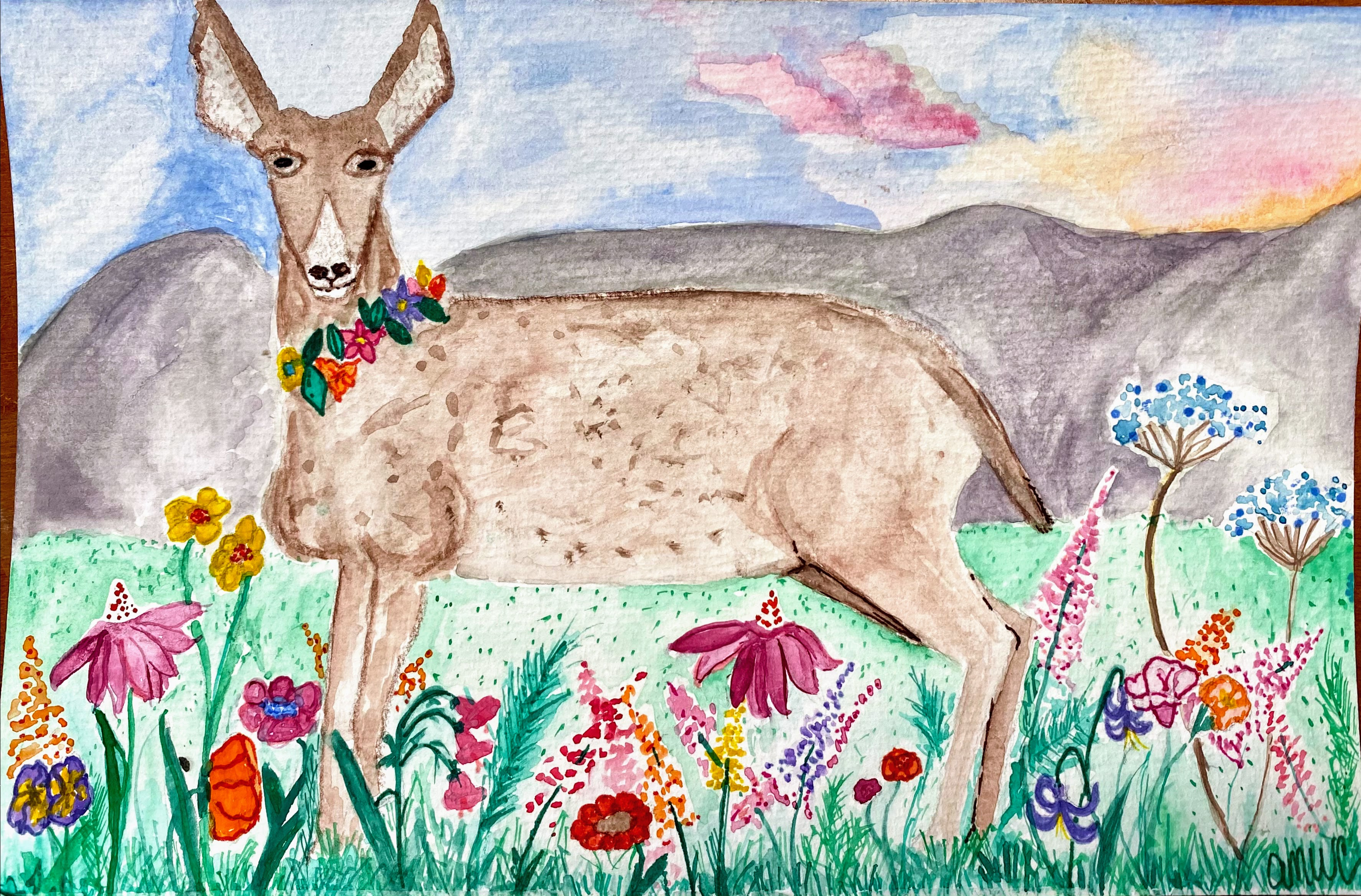 dear in wildflowers April