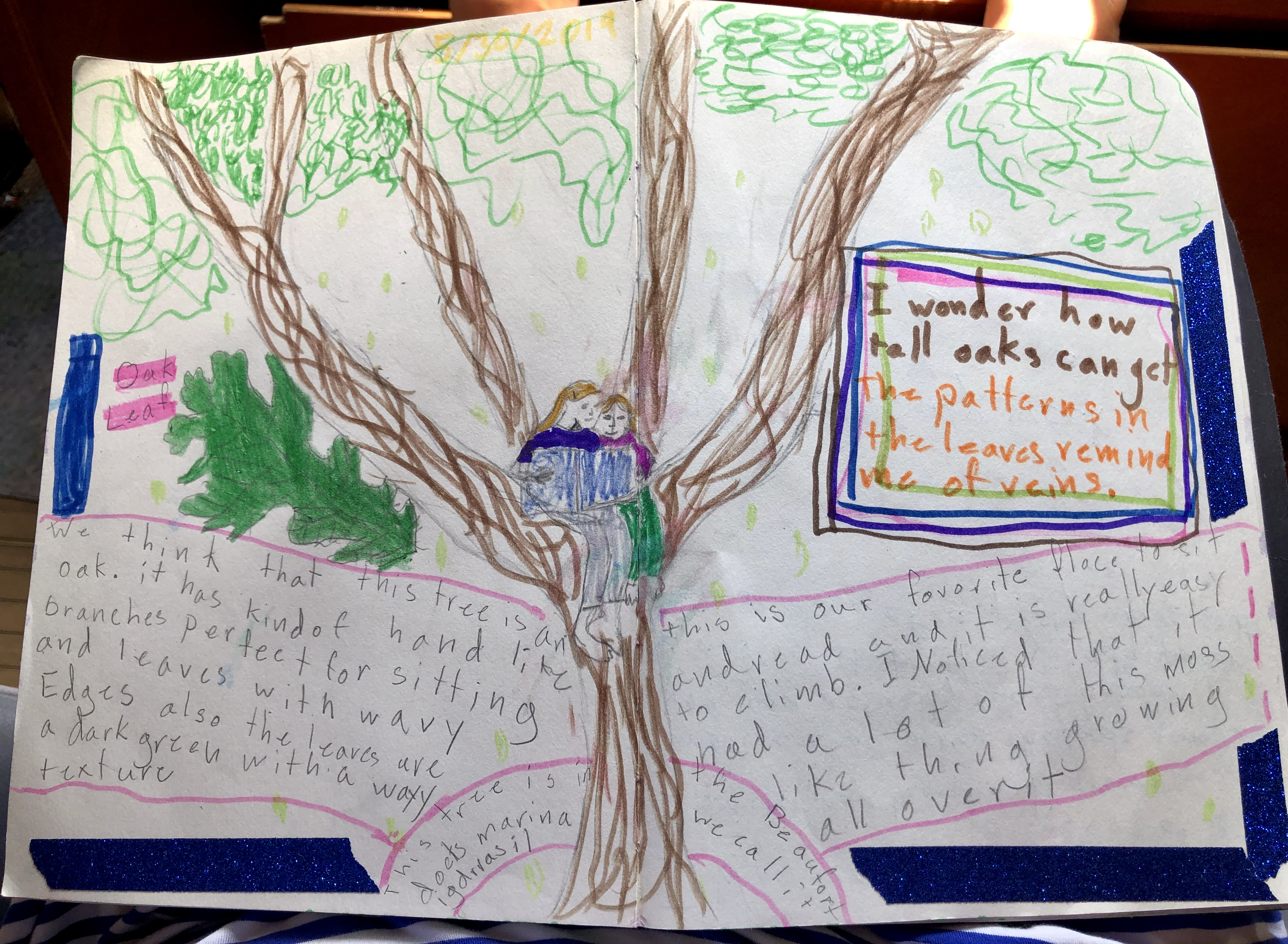 Audrey's Oak Tree nature journal