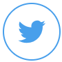 Twitter outline and circle button with icon