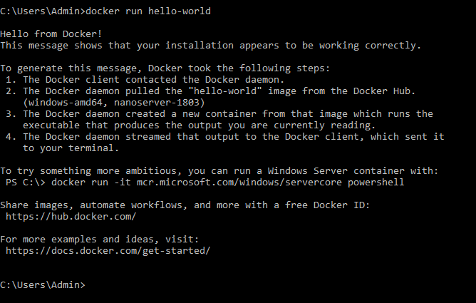 Run Jar on WindowServer2016 with JDK 11-docker Image · Issue