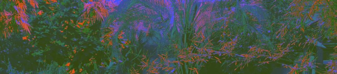 datamosh_cover_2x