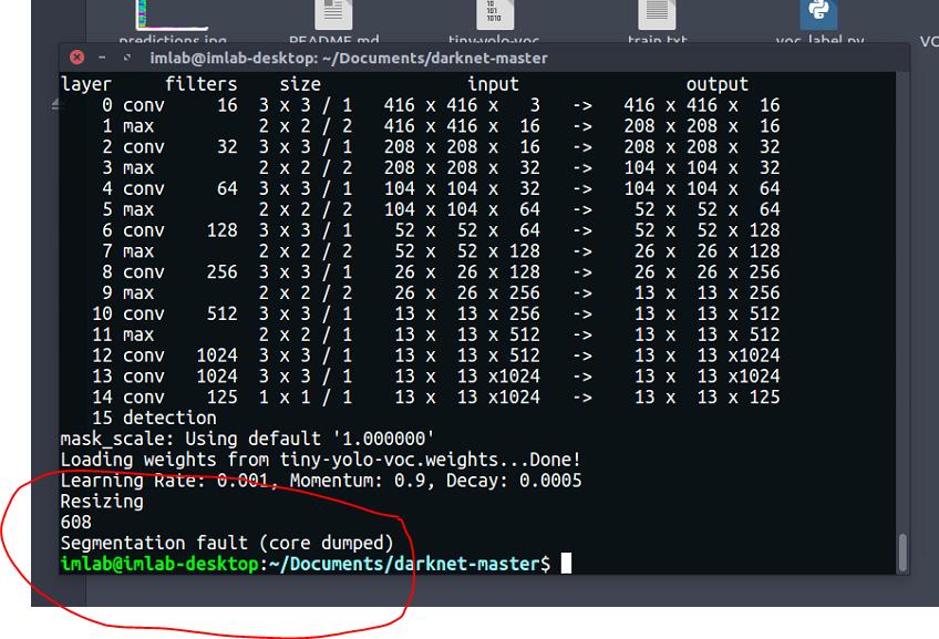 Segmentation fault (core dumped) in training own data yolo2