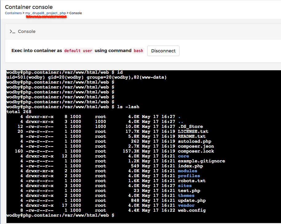 Docker for mac data root nfs