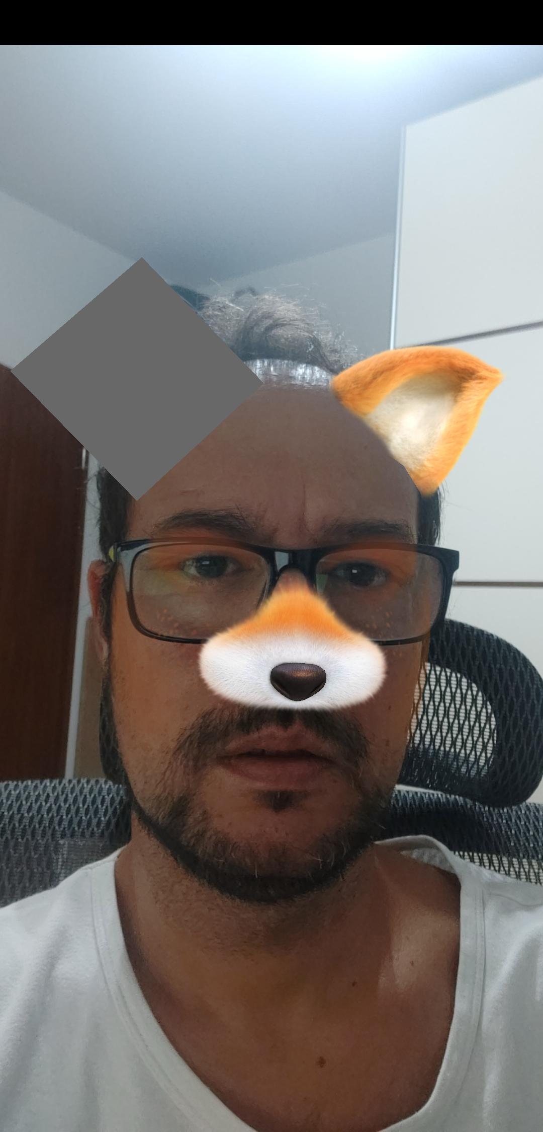 google-ar ( Google AR )