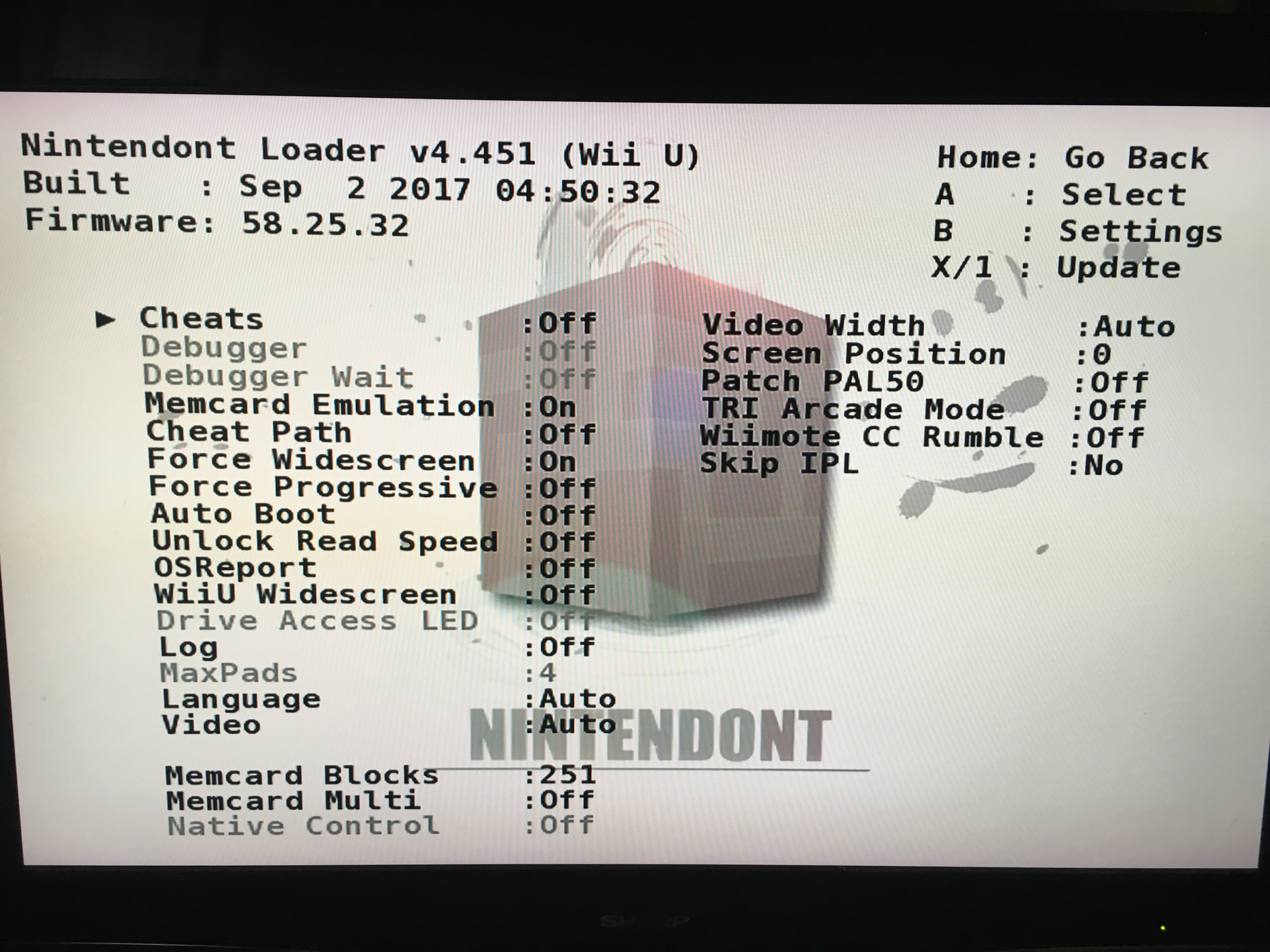 how to use cheats with nintendont