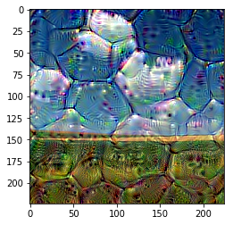 Deep Dream Example · Issue #157 · tensorflow/swift-models