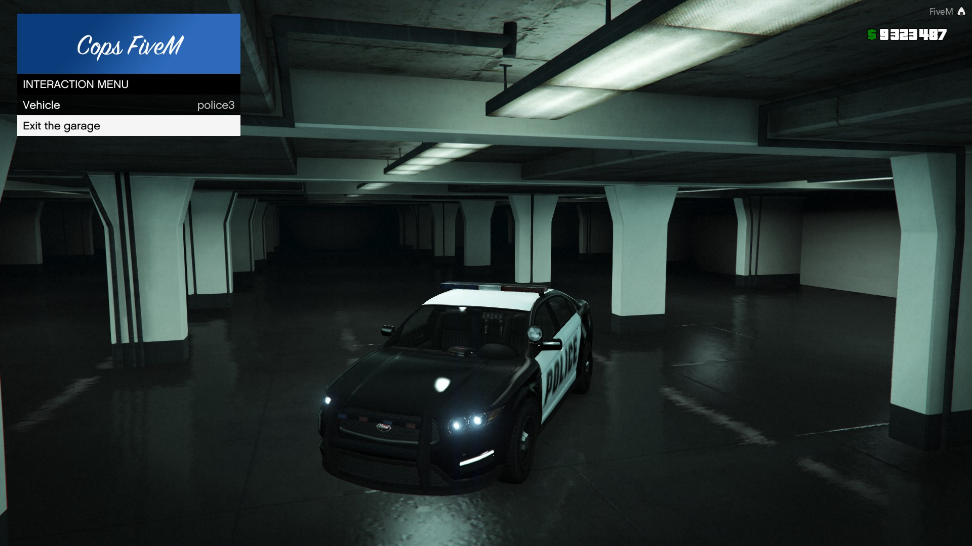 Vehicle Garage Fivem