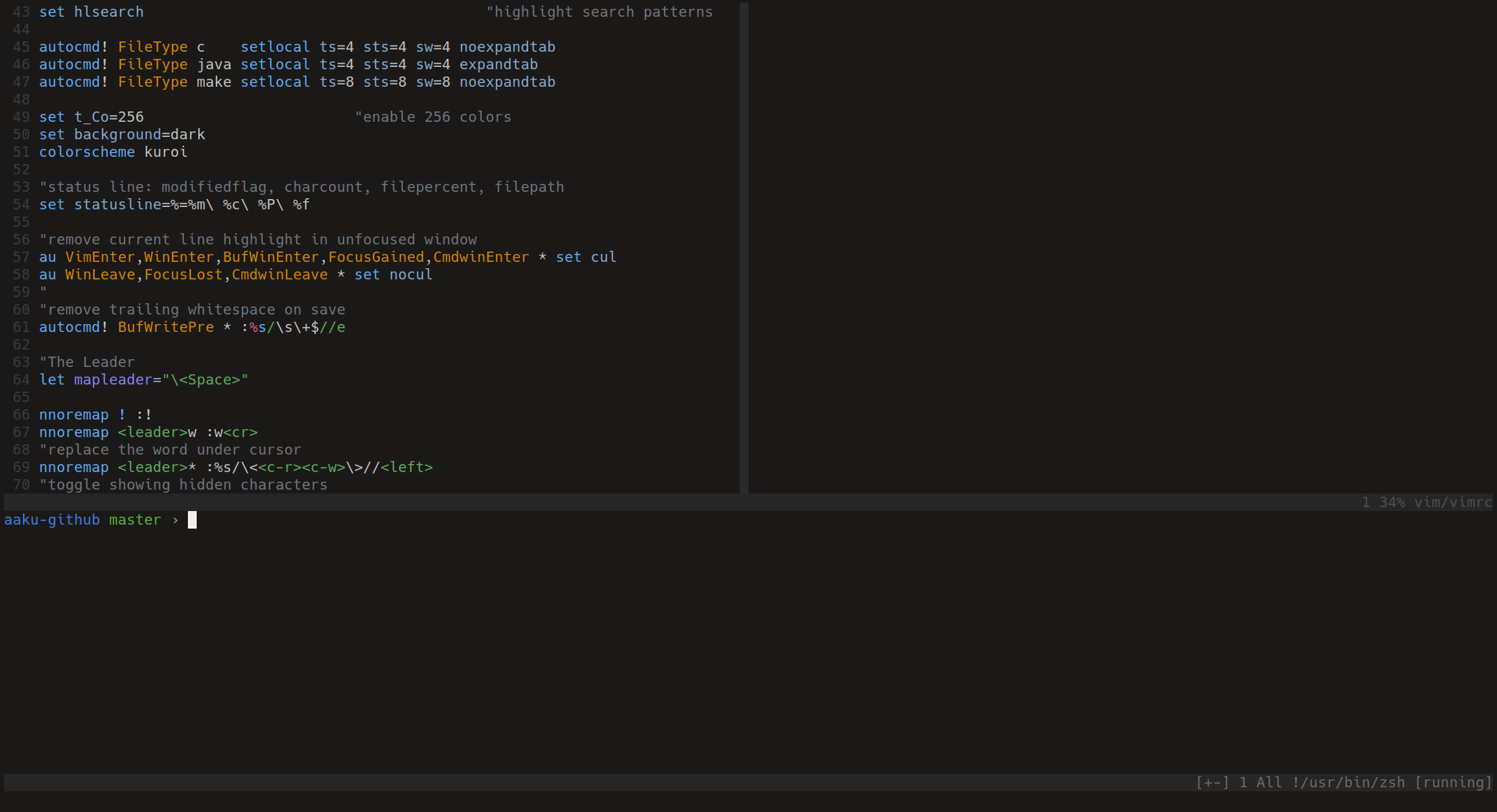Screenshot Vim terminal