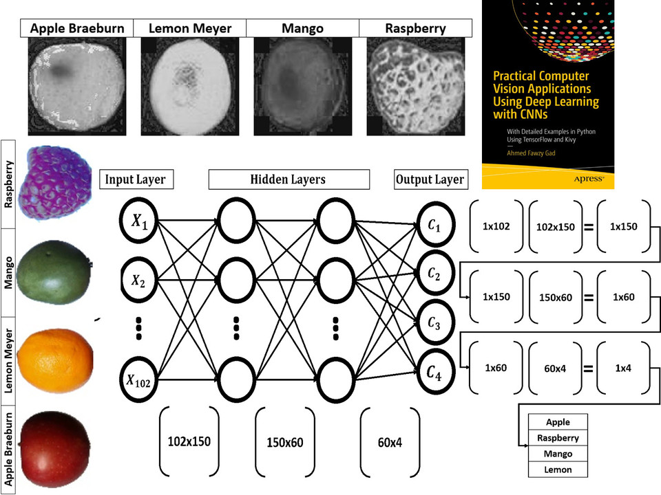 Building Neural Networks Python