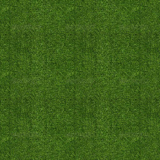racetrack_grass