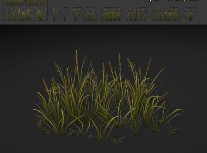 Inprove Soccer Field Grass Apperence Ideas Inside Issue