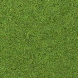 ground_grass_gen_05