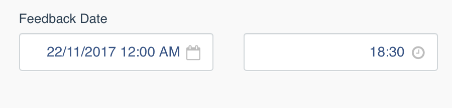 Datepicker field format selection doesn't work correctly · Issue