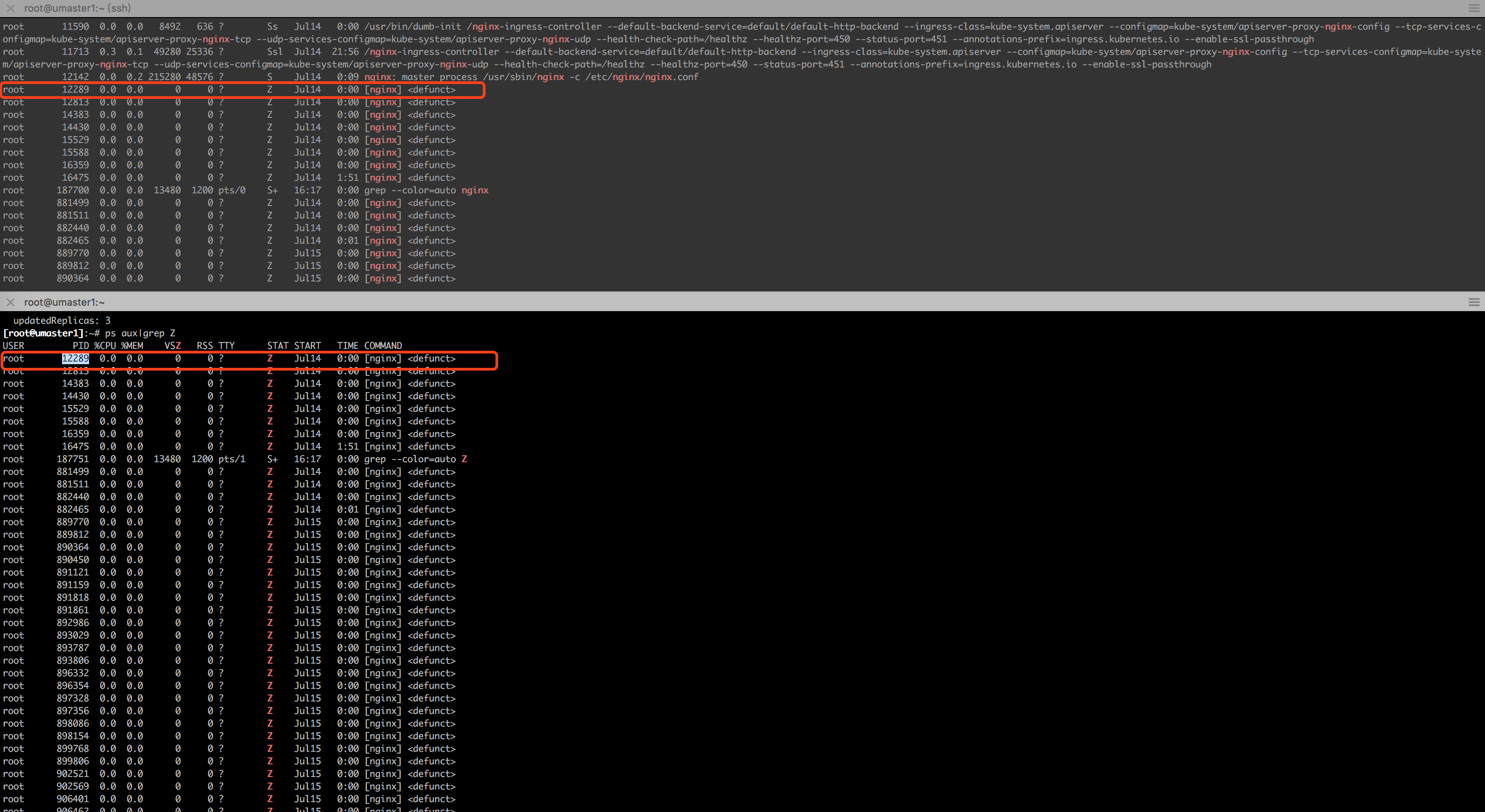 There are many nginx zombie processes when I start ingress