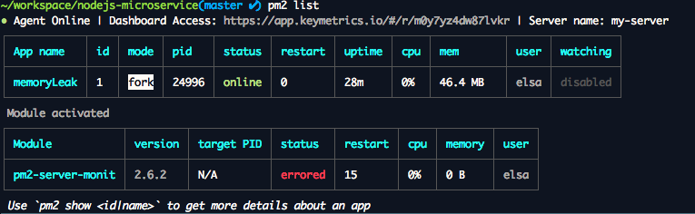pm2-server-monit status errored · Issue #68 · keymetrics/pm2-server