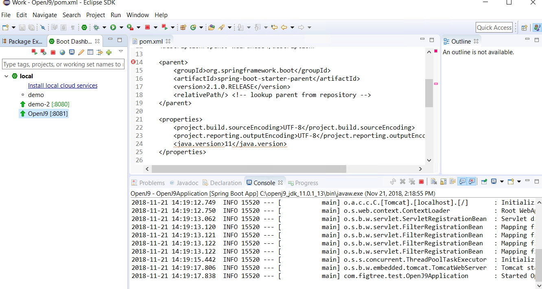 OpenJ9 Java 11 on Windows 10 won't start crashes with