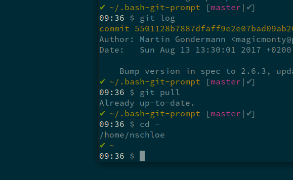 With solarized colors: Time invisible for light theme, too