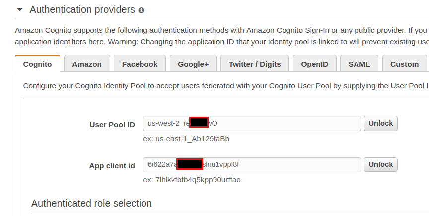 How to login through Identity Pool via Identity Provider