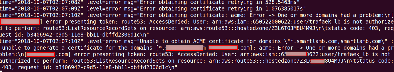 Wildcard domain certificate generation with route 53 fails  · Issue