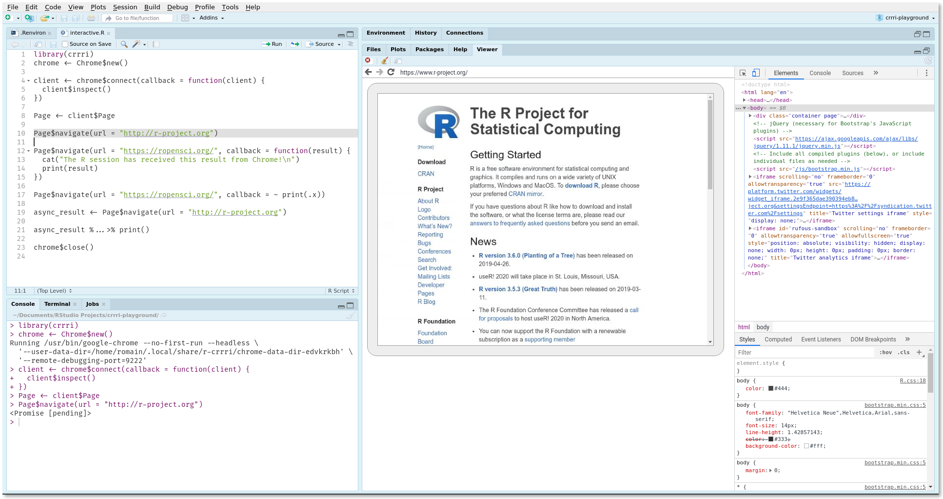 R Project website in headless Chrome