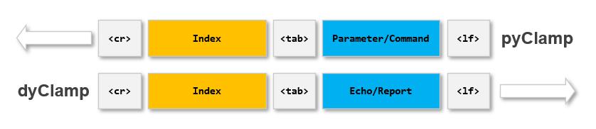 dyClamp_protocol