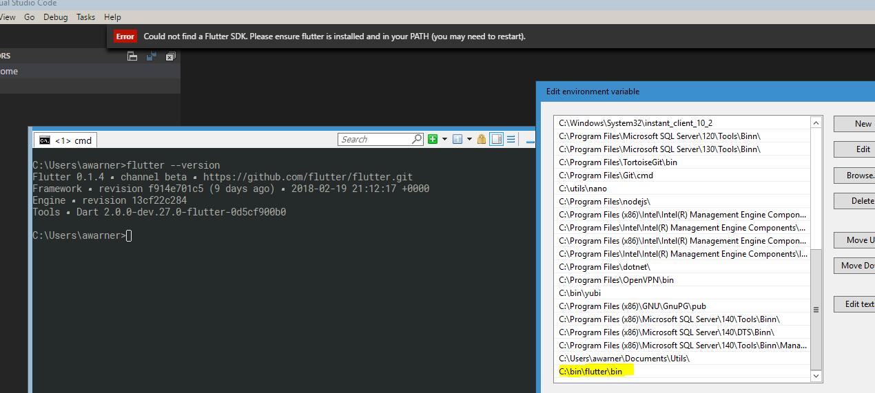 Could not find a Flutter SDK  Please ensure flutter is installed and