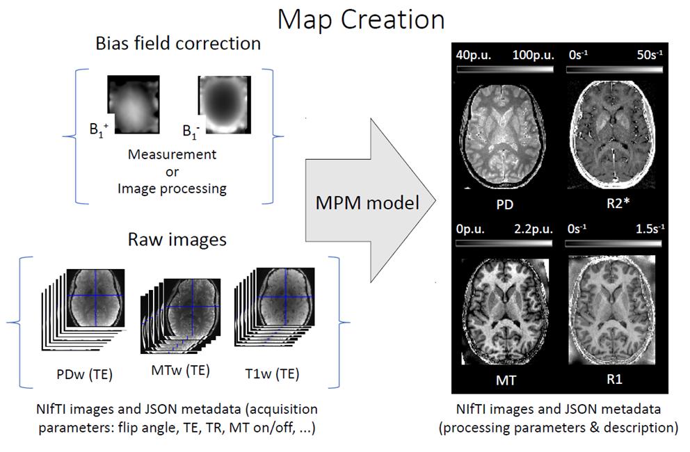 BIDS-ifying the hMRI toolbox · Issue #74 · ohbm