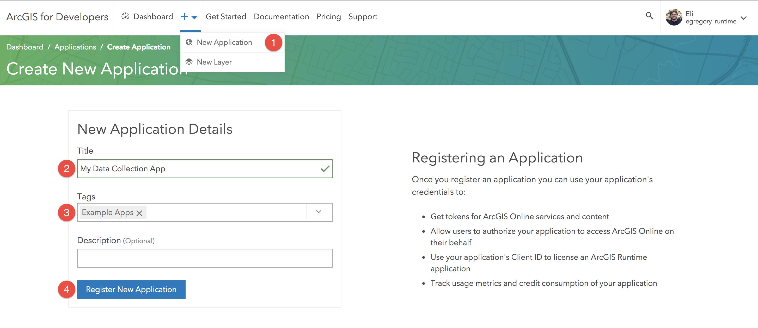 Register ArcGIS Application