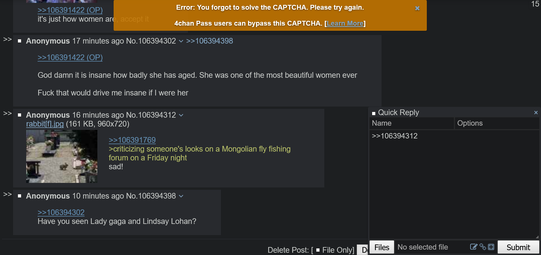 4chan Pass doesn't work in 4channel but works in 4chan