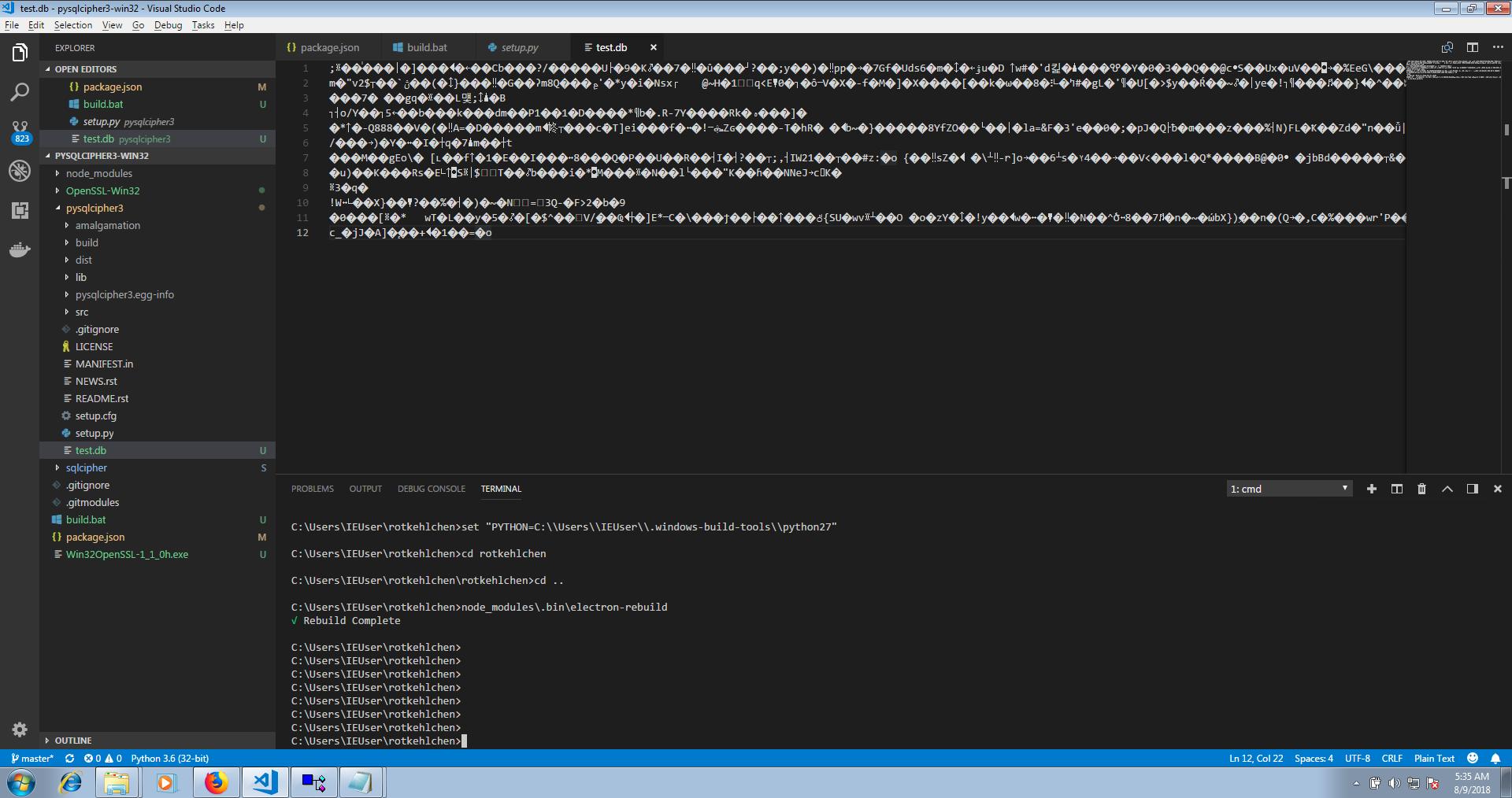 Add Windows Support · Issue #28 · rotkehlchenio/rotkehlchen