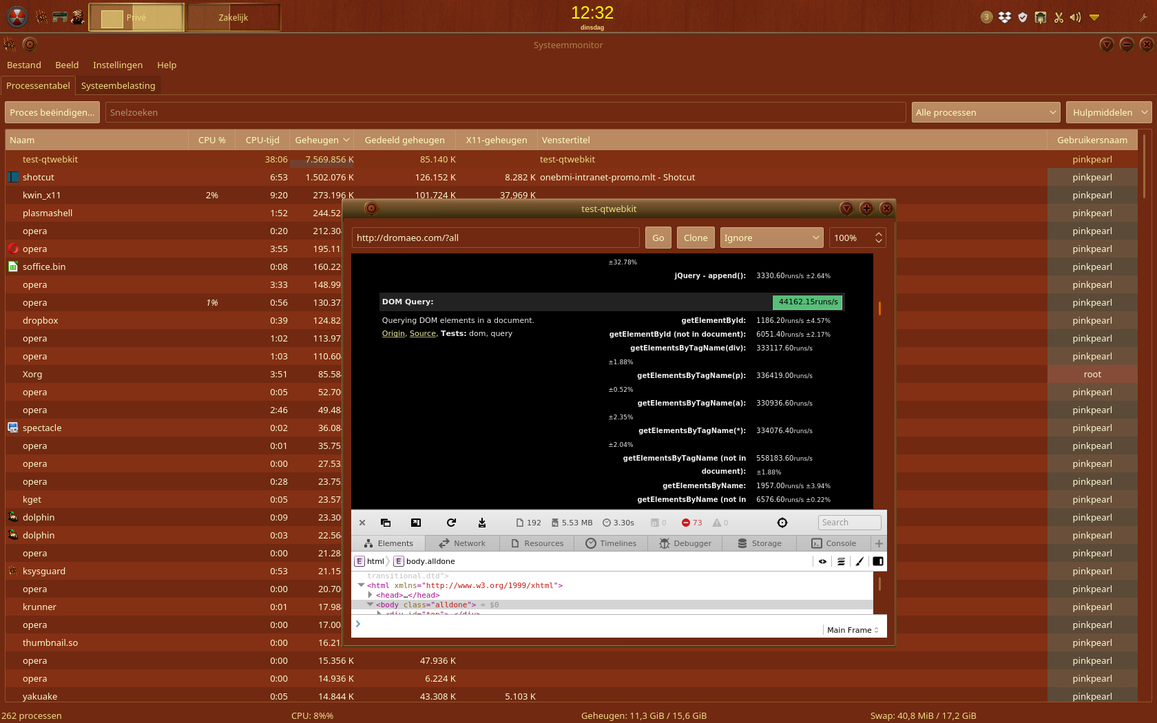 Qt Webkit Example