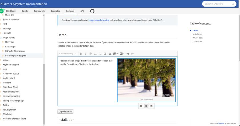 Adding ImageStyles to Custom Build VueJS + Laravel Mix