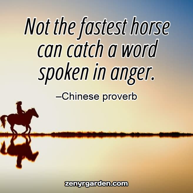 right-speech-quote-chinese-proverb